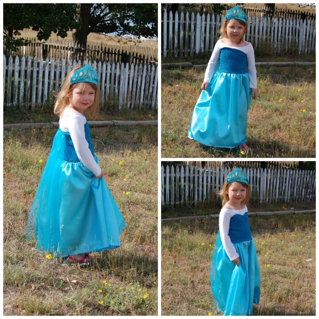 Elsa Dress Collage