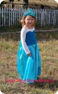 Elsa Dress1